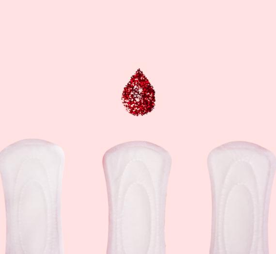 Panel « De l'hygiène menstruelle à la santé globale: stop à la précarité menstruelle » (vidéo)