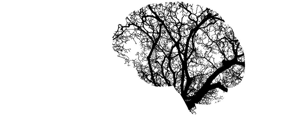 Violence faite aux femmes : diagnostiquer les commotions cérébrales